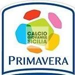Primavera Campionato Calcio 2013-2014