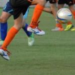 Anticipi del sabato e le partite della domenica –8/9 Febbraio  2014 – Allievi  Giovanissimi  Regionali e Fascia B -