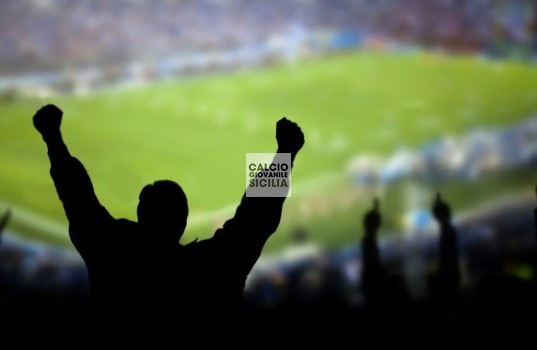 fan-football-stadium-sports web