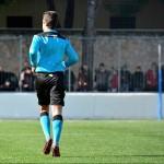 Decisione Giudice Sportivo – Campionato Nazionale Under 17-16-15 – Lega Pro Under 15-17  01 febbraio 2017
