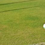 Campionato Regionale – Allievi e Giovanissimi – fase finale – gare dei triangolari