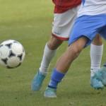 Campionato Regionale Allievi e Giovanissimi Fascia B 2017/2018 – Organico Definitivo