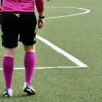 Decisione Giudice Sportivo – Campionato Nazionale Under 17-16-15 – A – B – C – 29 ottobre 2017 –