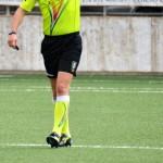 Decisione Giudice Sportivo – Campionato Regionale e Fascia B – Allievi e Giovanissimi –  02 novembre 2017