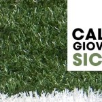 Campionato Regionale – Finali Regionali – seconda fase /gare play-out – Allievi e Giovanissimi -
