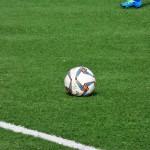 Campionato Regionale Under 16 e Under 14 – organici provvisori.
